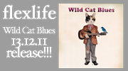 flexlife - Wild Cat Blues