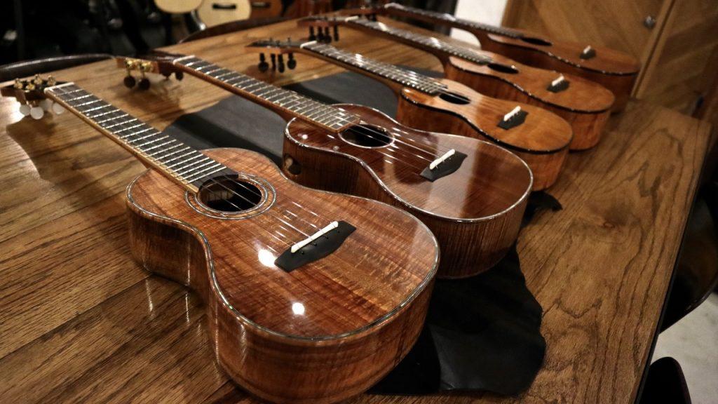 Lotus Acoustics 入荷!