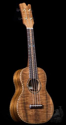 David Gomes Concert Custom -Premium Curly Koa-