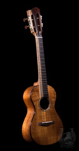 "Lotus Acoustics Concert ""Curly KOA"""