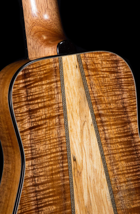 I'iwi  Concert Custom Premium Model -Curly Koa-